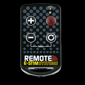 NEW Remote Keyfob Transmitter (New Remote System)